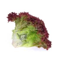 Салат краснолистный, 1пучок (пакет)